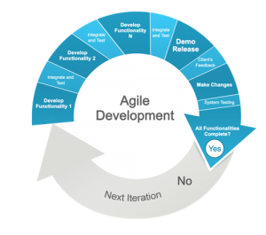Agile development is one way to reduce custom software risk