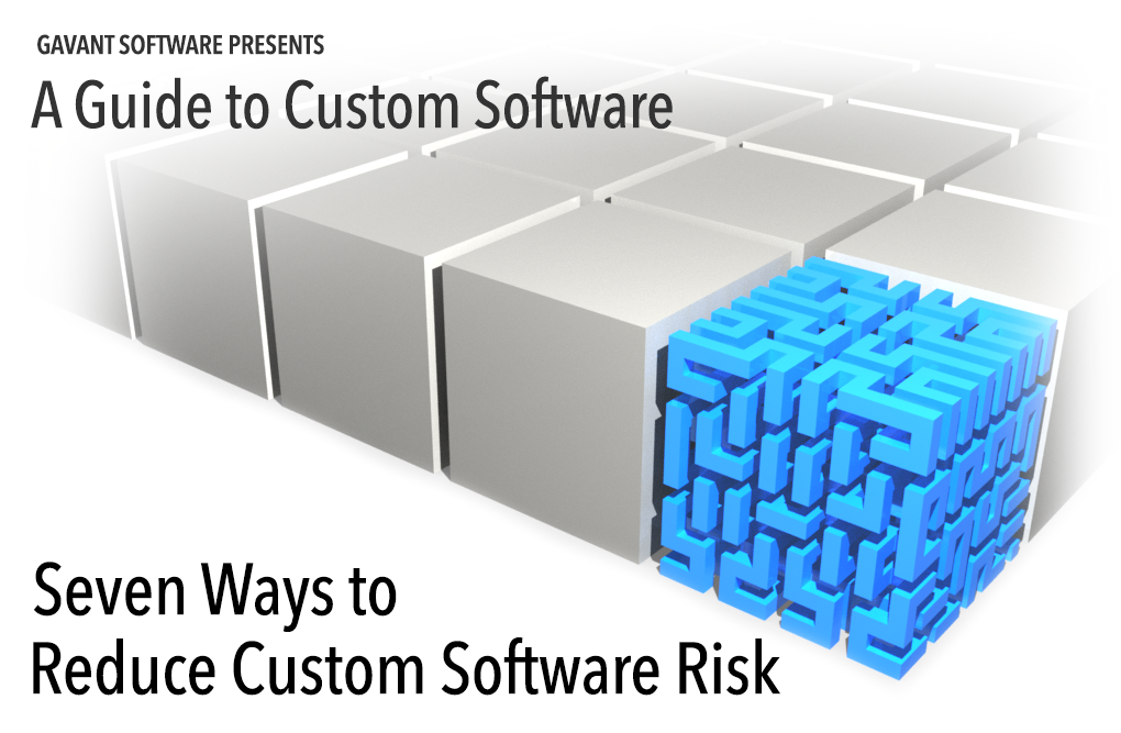 Seven Ways to Reduce Custom Software Risk