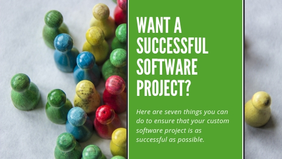 Successful software project