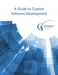 Whitepaper - A Guide to Custom Software Development